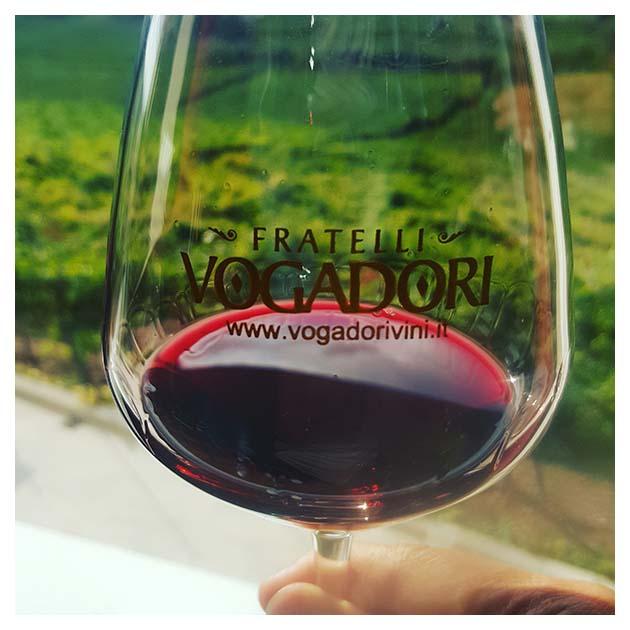 Wine Tour | Venice Day Trips